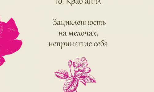 10. Краб аппл