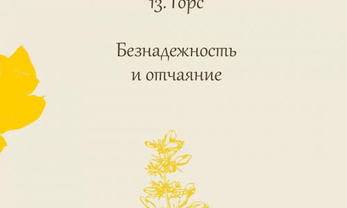 13. Горс