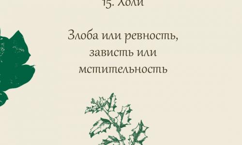 15.Холи