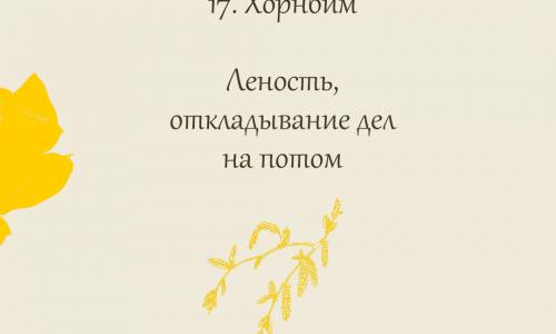 17.Хорнбим