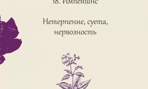 18.Импейшнс