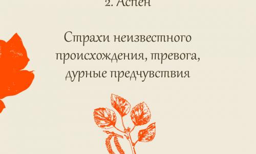 2. Аспен
