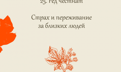 25.Red Chestnut (Каштан красный)