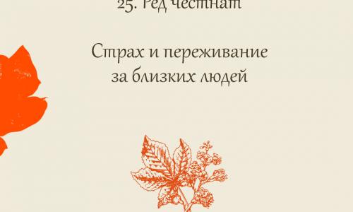 25.Ред честнат