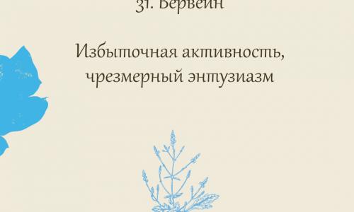 31.Вервейн