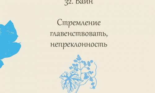 32.Vine (Виноградная лоза)